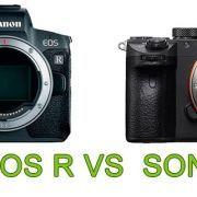 Comparativa Canon EOS R y Sony A7 III
