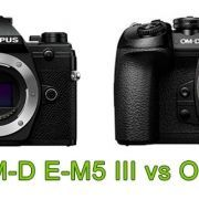 Olympus OM-D E-M5 III vs OM-D E-M1 II
