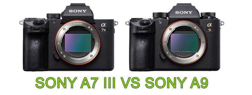 COMPARATIVA SONY A7 III VS SONY A9