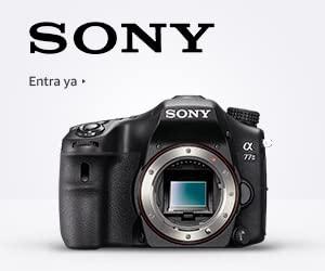 Cámaras EVIL Sony